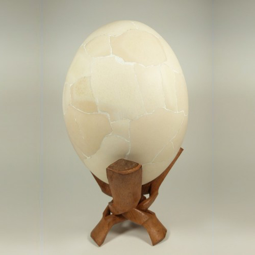 elephant-bird-egg
